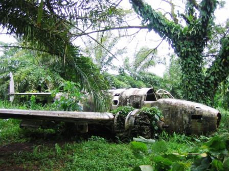 real life video game scenes planes in the jungle